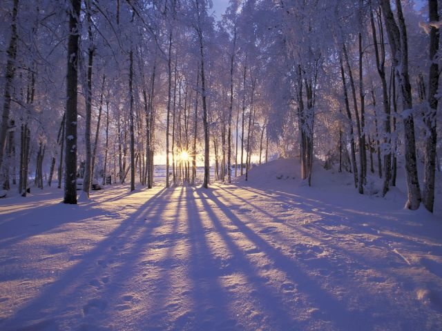 Winter-Solstice-2010 (1)
