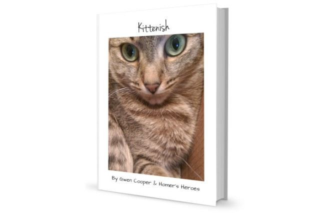 Kittenish-Cover2-700x467