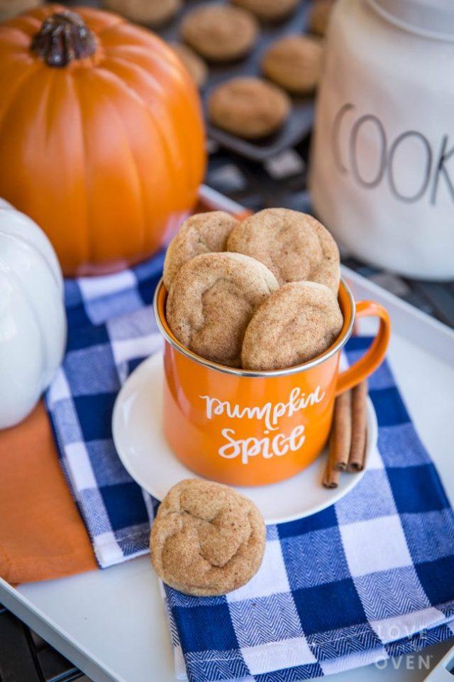 pumpkinsnickerdoodle